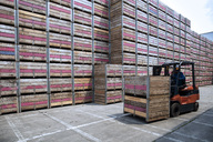 Worker on forklift moving crates on factory yard - ZEF15401