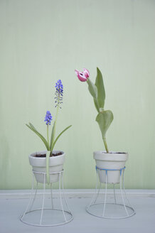 Flower decoration, upcycling of lampshade as flowerpot - GISF00330