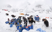 Nepal, Solo Khumbu, Mountaineers at Everest Base Camp - ALRF01104