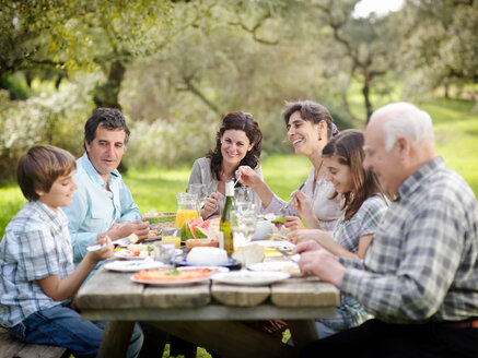 Family having meal in countryside - CUF00954