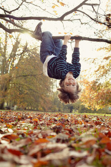 Boy playing on tree outdoors - CUF00993