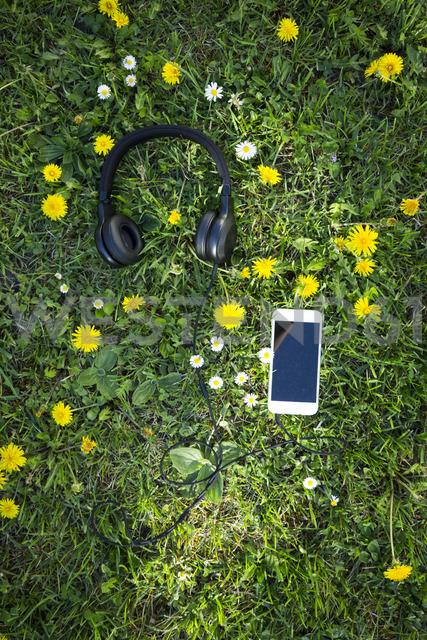Headphones and smartphones on flower meadow - LVF06936