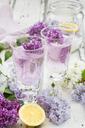 Homemade lilac sirup - LVF06945