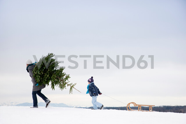 Mother and son carrying christmas tree - CUF01575