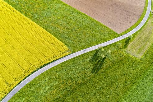 Germany, Baden-Wuerttemberg, Rems-Murr-Kreis, Schurwald, fields and road - STS01539