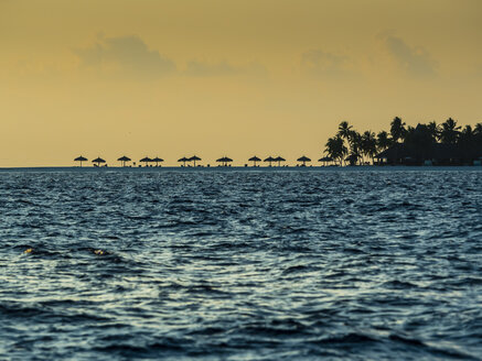 Maledives, Ross Atoll, beach with beach umbrellas at sunset - AMF05717