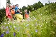 Family hiking in flower meadow - HHF05539