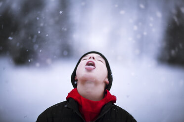 Portrait of boy catching falling snow on tongue - CUF02084
