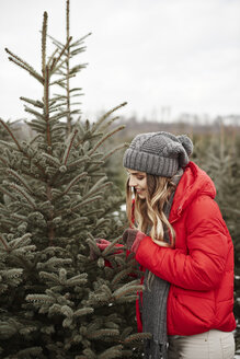Young woman looking at pine needles while shopping for christmas tree from forest - CUF02923