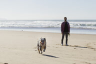 Man watching his dog run on beach - CUF03163
