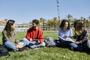 Four students sitting in park learning together - JRFF01633