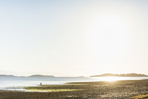 Distant view of couple on beach at Rathrevor Beach Provincial Park, Vancouver Island, British Columbia, Canada - CUF04088