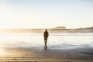 Man strolling on Long Beach, Pacific Rim National Park, Vancouver Island, British Columbia, Canada - CUF04100