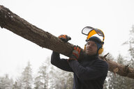 Logger carrying log, Tammela, Forssa, Finland - CUF04658