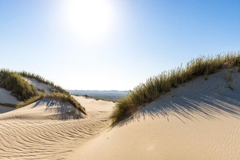 Germany, Schleswig-Holstein, Sylt, sand dune against the sun - EGBF00244