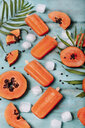 Homemade papaya ice lollies - RTBF01277
