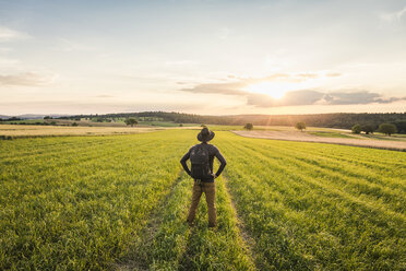 Mid adult man, standing in field, rear view, Neulingen, Baden-Württemberg, Germany - CUF05476