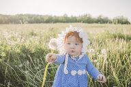 Baby girl in field, holding dandelion - ISF01389