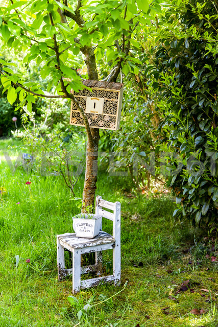Insect hotel in a garden - SARF03758