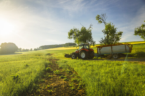 Austria, Innviertel, fieldscape with tractor at morning light - AIF00494