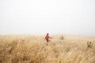 Boy in foggy field landscape, Fairfax, California, USA, North America - CUF07270