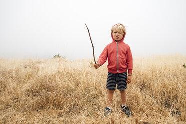 Boy in field holding stick, Fairfax, California, USA, North America - CUF07273