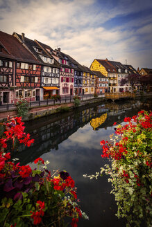 Traditional houses on canal waterfront, Colmar, Alsace, France - CUF07560