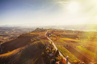 Sunlit view from hot air balloon of rolling landscape and autumn vineyards, Langhe, Piedmont, Italy - CUF07569