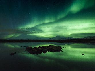 Aurora borealis, Thingvellir, Iceland - CUF07611