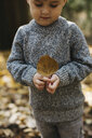 Boy holding brown leaf in forest - ISF01562