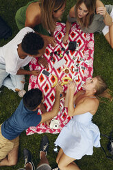 Overhead view of five adult friends picnicking in park - ISF01954