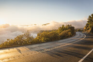 Highway and valley mist at sunrise, Yosemite National Park, California, USA - CUF08000