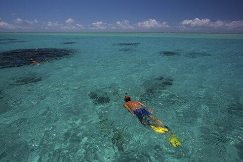 Mature man snorkelling in sea, Ile aux Cerfs, Mauritius - CUF08258
