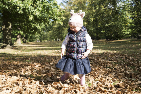Female toddler toddling amongst autumn leaves in park - CUF08330