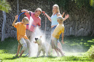 Family spraying dog with water from hosepipe - CUF08867