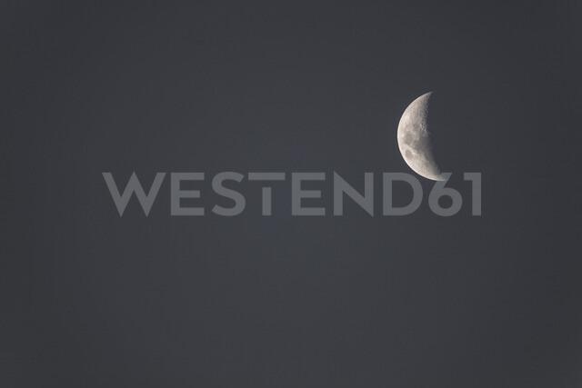 Night sky with half moon - ZEF15491