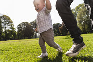 Father walking hand in hand with son in a park - UUF13796