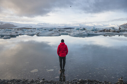 Rear view of male tourist looking out at icebergs on glacial lagoon, Jokulsarlon, Iceland - CUF09604