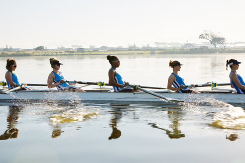 Female rowing team rowing scull on sunny lake - CAIF20655