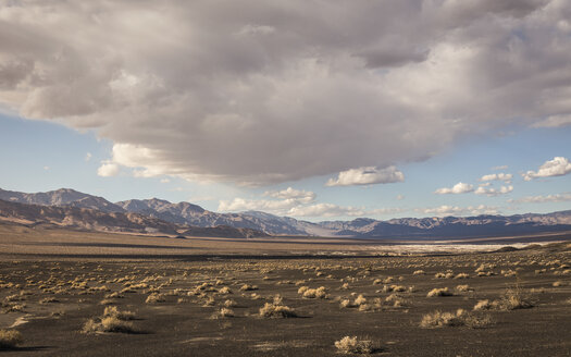 Landscape at Ubehebe Crater in Death Valley National Park, California, USA - CUF11581