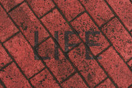 Word 'Life' stenciled on red pavement - AFVF00490