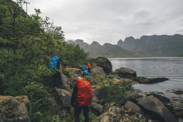 Norway, Lofoten, Moskenesoy, Group of hikers walking along Kjerkefjord - GUSF00839