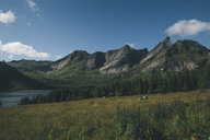 Norway, Lofoten, Moskenesoy, Selfjord - GUSF00875