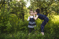 Girl whispering to little sister in field with trees - ISF04385