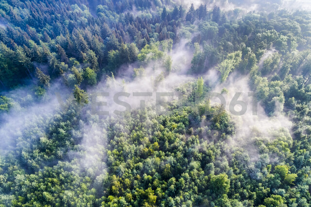 Germany, Baden-Wuerttemberg, Swabian Alb, Aerial view of Schurwald, morning fog - STSF01565