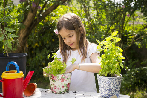 Portrait of little girl potting parsley on table in the garden - LVF06994