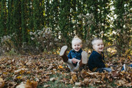 Portrait of male and female toddler twins sitting amongst autumn leaves in garden - ISF04801
