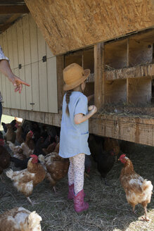 Young girl on farm, collecting eggs from chicken coop - ISF05419