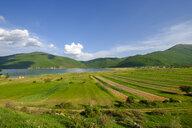 Albania, Prespa National Park, Lake Prespa, Village Zaroshka - SIEF07777