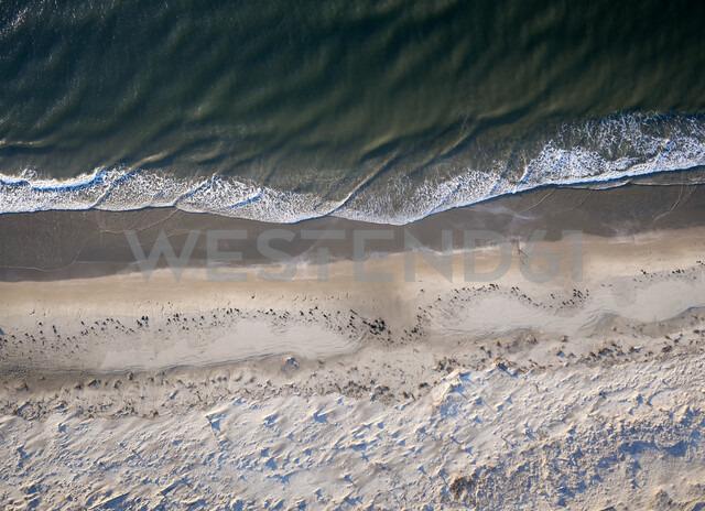 USA, Virginia, Aerial view of Virginia Coast Reserve, Atlantic Ocean, beach - BCDF00352 - Cameron Davidson/Westend61